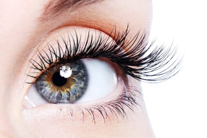 Beauty female eye with curl long false eyelashes - macro shot over white background